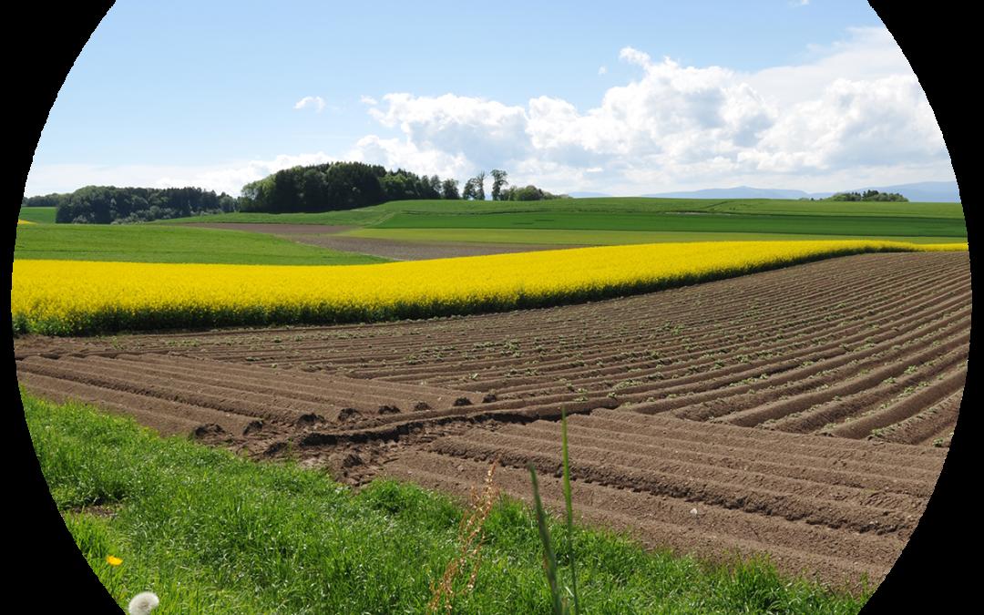 Journée du secteur agroalimentaire